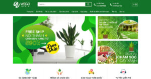 Thiết kế website Cây cảnh